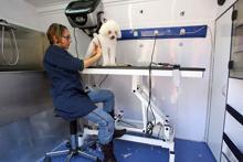 Brutus Mobile Wash presenta en Iberzoo 2007 la peluquería canina móvil
