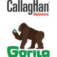 Callaghan / Gorila Calzado - Complementos