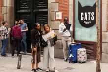 Cats Hostels