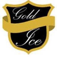 Franquicias Franquicias Gold Ice Distribución de equipos de fabricación y almacenamiento de cubitos de hielo