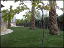 Nice Garden en Cataluña
