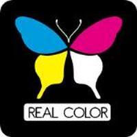 Franquicias Franquicias Real Color Consumibles compatibles y accesorios de informática y telefonía