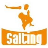 Franquicias Franquicias Salting Centers Saltar en cámas elásticias