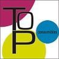 Top Consumibles Cartuchos de impresora, reciclados, compatibles y originales. Material de oficina.