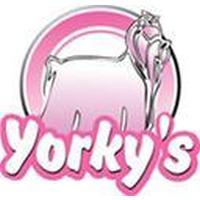 Franquicias Franquicias Yorkys Estilismo canino, venta de articulos y complementos para mascotas