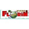 Florín 2000
