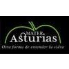 Mater Asturias