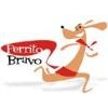 Perrito Bravo